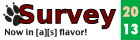 survey banner